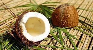 Кокосовое масло: что это? Для чего? Как использовать?