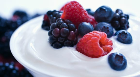 Greek yoghurt probiotics
