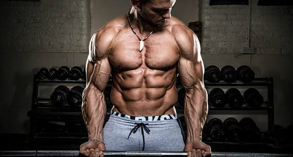 muscle pump building mass