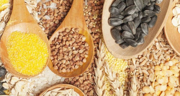 5 Best Plant-Based Protein Sources