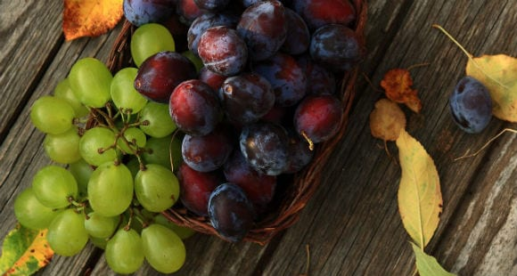 What Are Anthocyanins? Benefits, Dosage, Where To Find