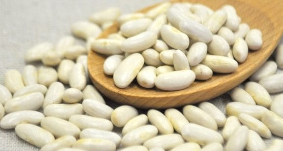 The 'Carb Blocker' | What Is White Kidney Bean Extract?