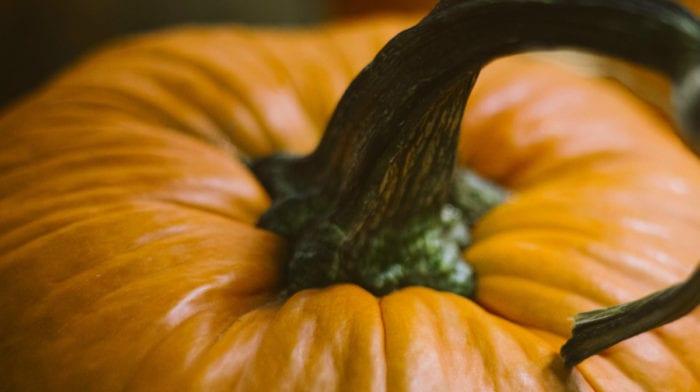 Pumpkin Spice Protein Shake & 5 Other Healthy Ideas!