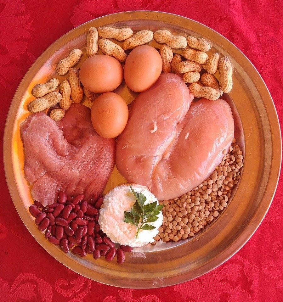 Izvori proteina
