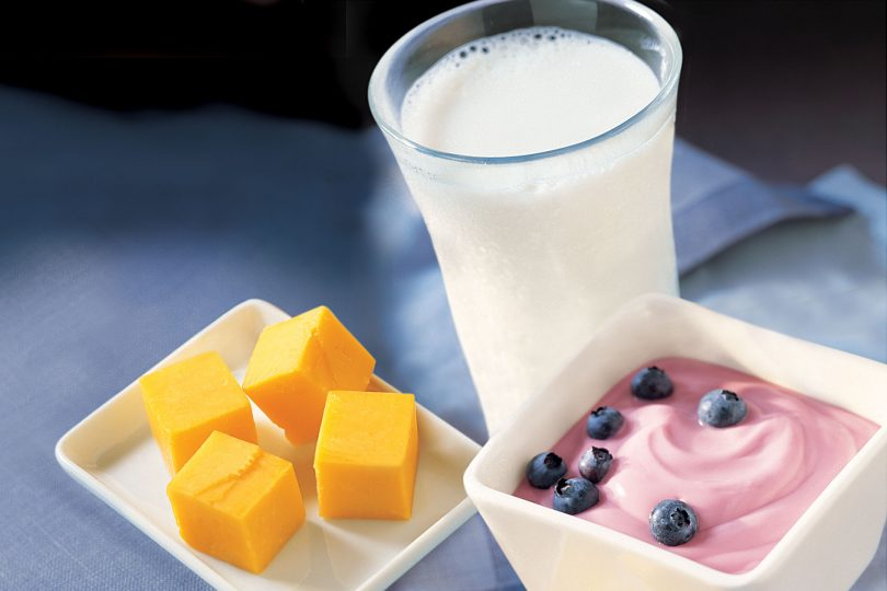 cheese, yogurt and milk