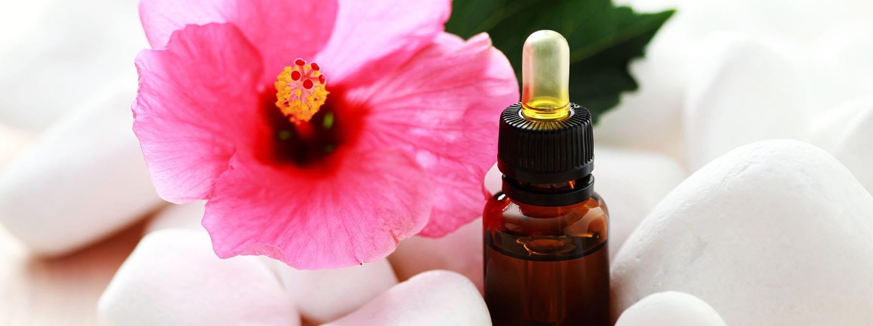 Discover Hibiscus Benefits: Nature's Botox
