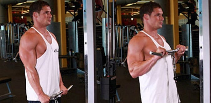 biceps-6