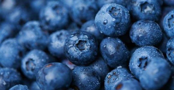 myrtilles, un aliment idéal pour la santé