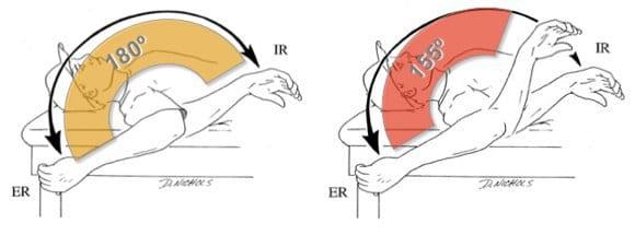 mobilité de l'épaule