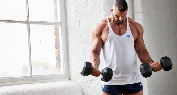 fibres musculaires (3)
