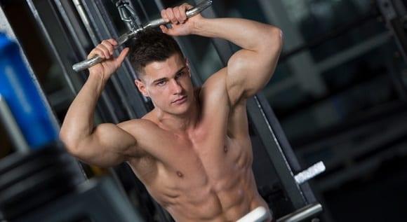 push pull legs, programme d'entraînement de musculation (2)