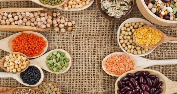 régime végétarien équilibré, régime vegan, source de protéine