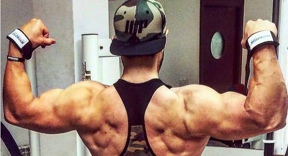 prendre de la masse musculaire, prise de masse (11)