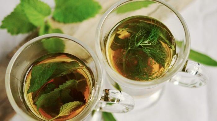 Qu'est-ce que le thé Moringa ? Découvrez ses 3 incroyables bienfaits santé