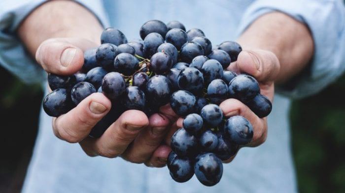 Extrait de pépins de raisin | Avantages et utilisation