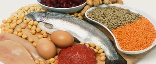 Die Wahl der Proteine