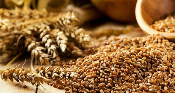 Glykämischer Index | Wie misst man Lebensmittel mit hohem oder niedrigem glyx Index?