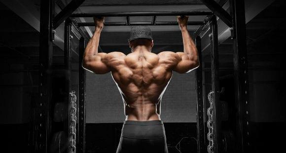 Muskelkraft aufbauen durch Negative und Erzwungene Wiederholungen