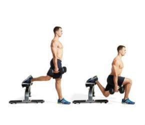 Auf welche Muskeln zielen Bulgarian Split Squats ab?