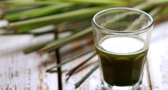 Was ist Weizengras? | 4 gesundheitliche Vorteile