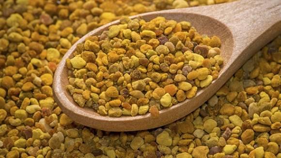 Bienenpollen | Die gesunde Nahrungsergänzung liefert Protein & Vitamine