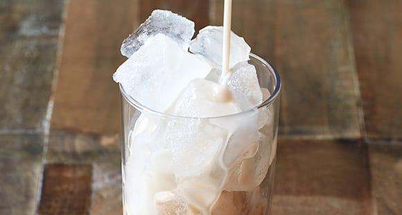 Protein Eis Shake | Sommerliches Rezept