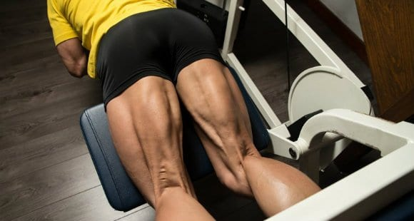 Oberschenkelmuskulatur