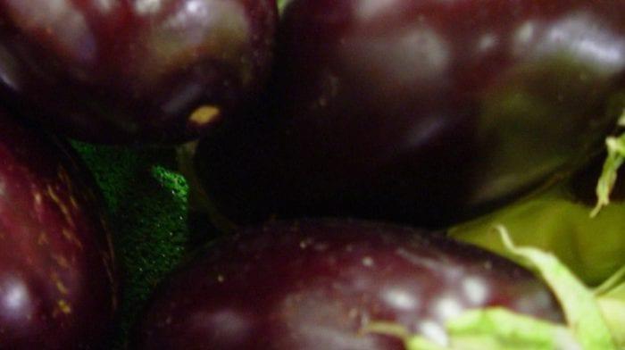 Gefüllte Aubergine | Kalorienarm & Veganisierbar