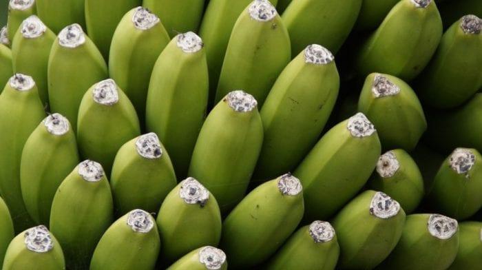 Rezept des Tages | High Protein Mango Bananen Kuchen