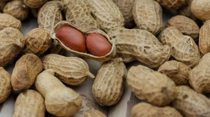 Proteinbällchen mit Erdnussbutter