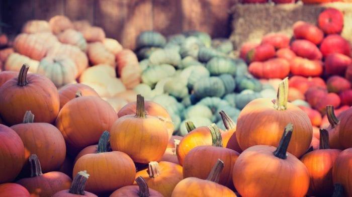 Veganes Kürbiscurry mit Linsen und Kokos | Gesunde Ernährung