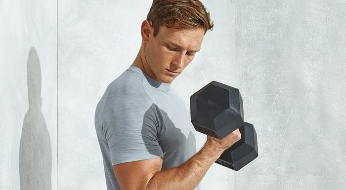 Darmbakterien & Muskelaufbau: Mehr Muskeln durch die richtige Darmflora?