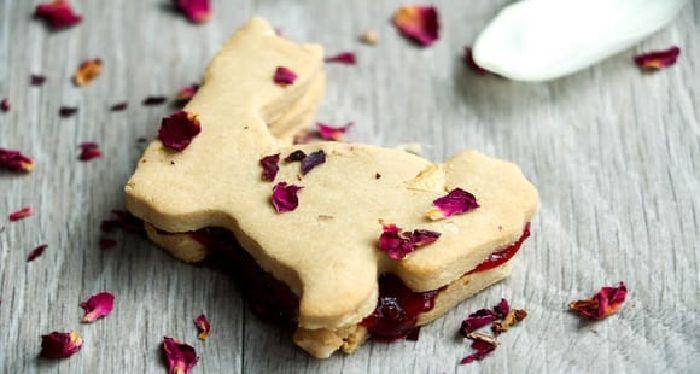 16 Protein Cookie Rezepte, um deinen Heißhunger zu stillen