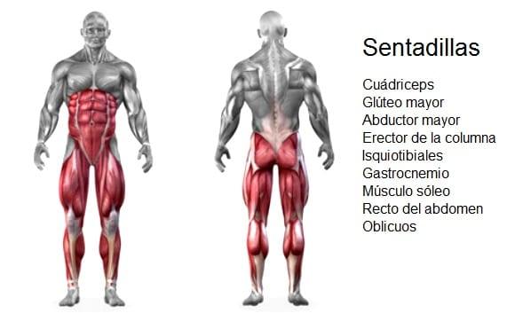 mejores ejercicios para cuádriceps y pierna