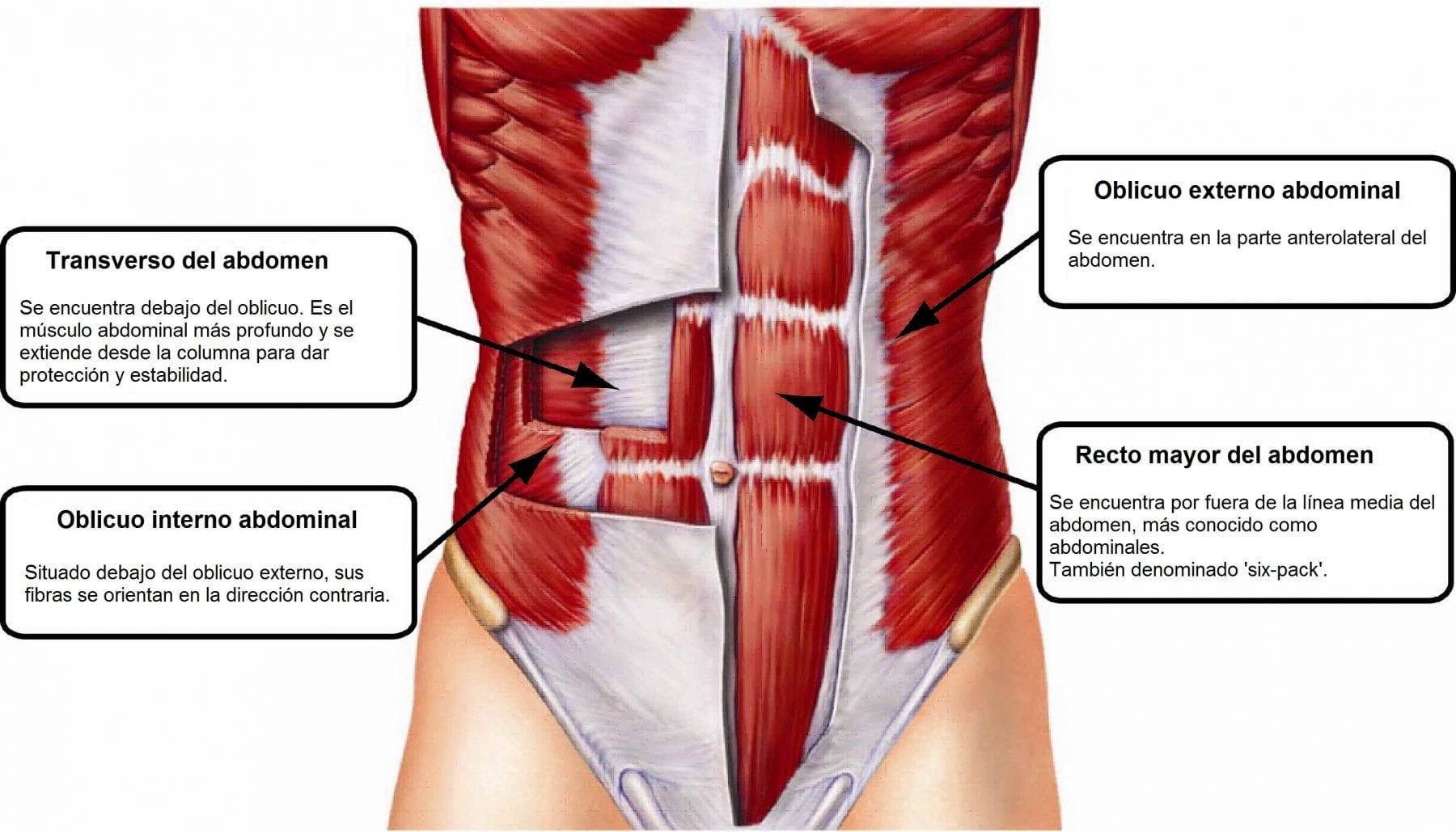 ejercicios para abdominales y rutina