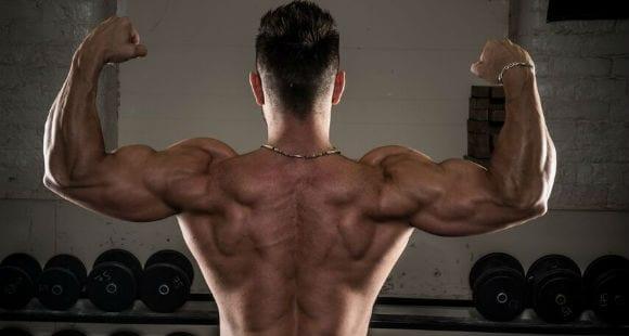 Ejercicios y Estiramientos para la Espalda | Corrige tu Postura