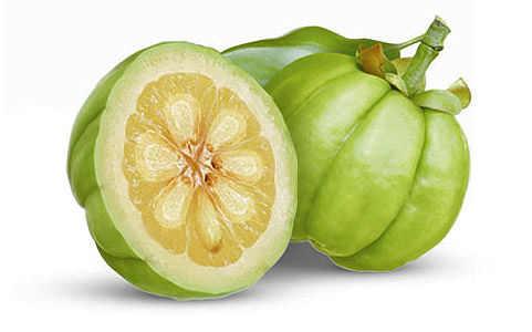 fruta garcinia cambogia