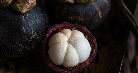 Garcinia cambogia | Qué es, Cómo tomar y Propiedades