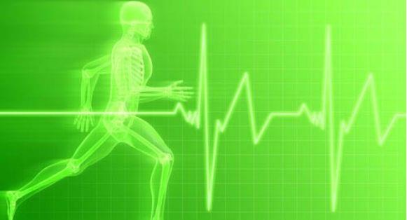Calcula tu Frecuencia Cardiaca Máxima