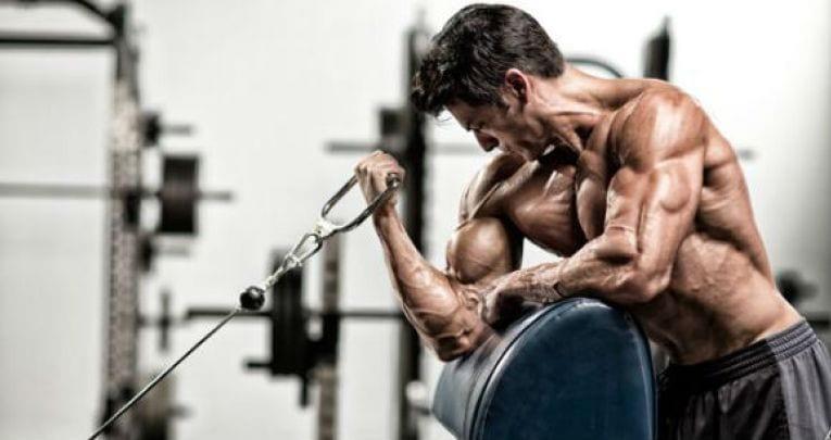 flexiones de biceps