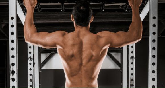 Aprende a Desarrollar Bien los Músculos de la Espalda