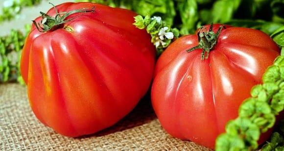 Nutrientes Esenciales que Debemos Tener en la Dieta