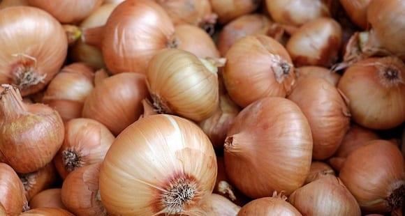 La Cebolla | Propiedades y Beneficios Para la Salud