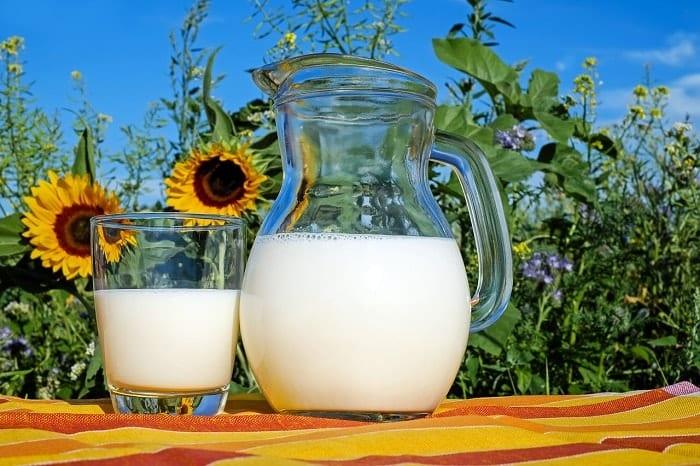 la leche de vaca