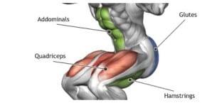 musculos-sentadilla
