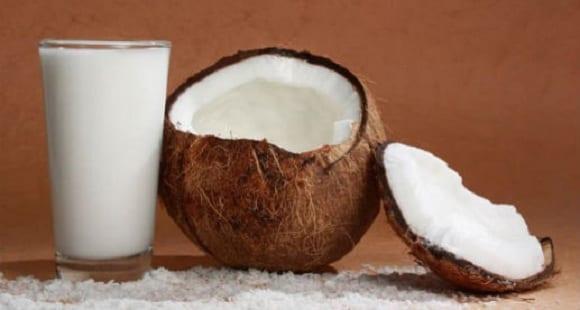 Leche de Coco | Beneficios, propiedades y usos