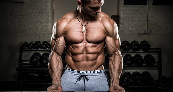 Cómo conseguir unos brazos más grandes |Anatomía, ejercicios y técnica
