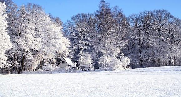 7 Deportes de Nieve más Practicados en el Mundo