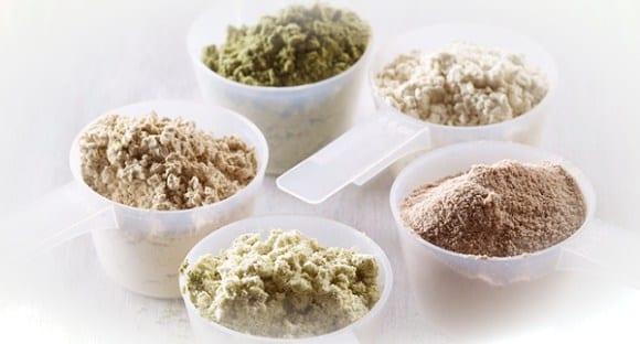 tipos de proteína orgánica