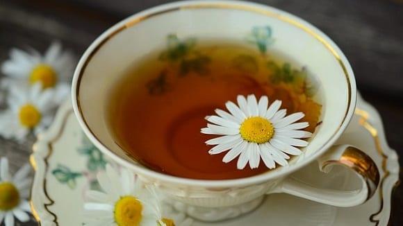 té verde de los mejores alimentos quemagrasas